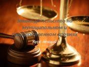 Законодательство на муниципальном и государственном уровнях Курс лекций