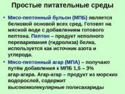 Простые питательные среды  • Мясо-пептонный бульон (МПБ)